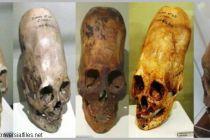 Analýza DNA: lebky z Paracasu nejsou lidské