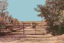Co se děje na ranči Toma Gormana?