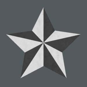 5star_450