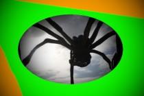 Pavoučí mimozemšťané – součást ovládání Země; Teorie o existenci arachnoidů – z Ruska a z Německa